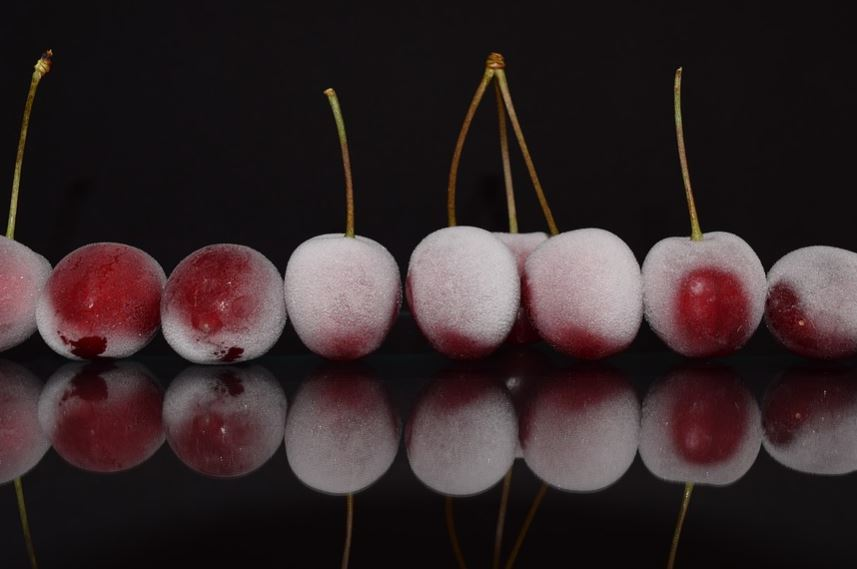 Can you Freeze Fresh Cherries