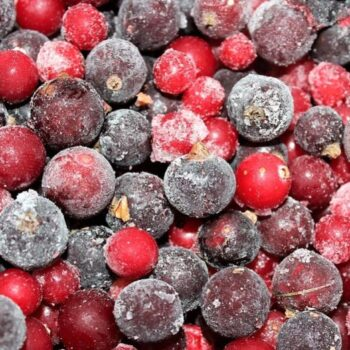 Can you Freeze Fresh Cranberries
