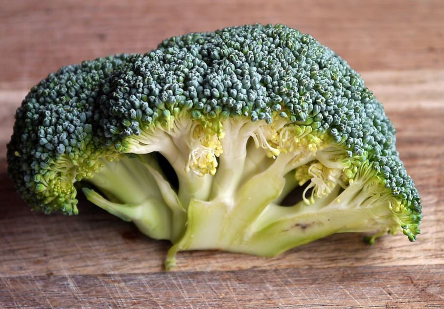 How to Freeze Dried Broccoli